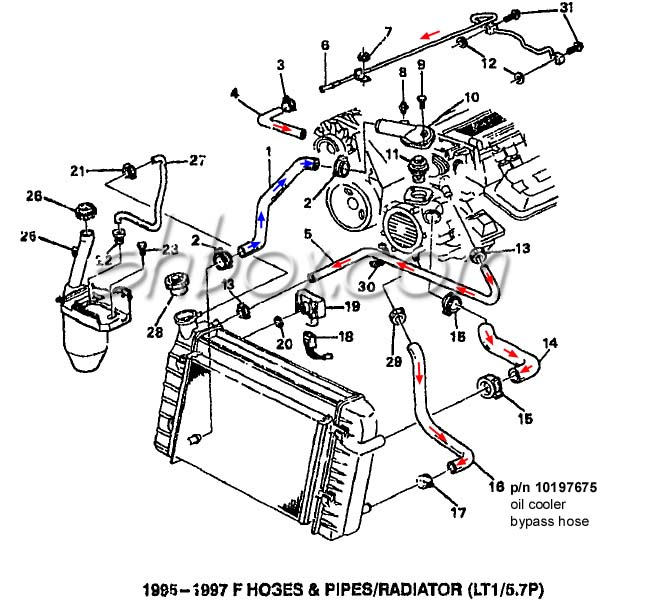 Lt1 Cooling Info on hose diagram 300zx
